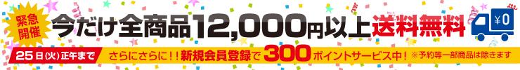 今だけ12,000円から送料無料